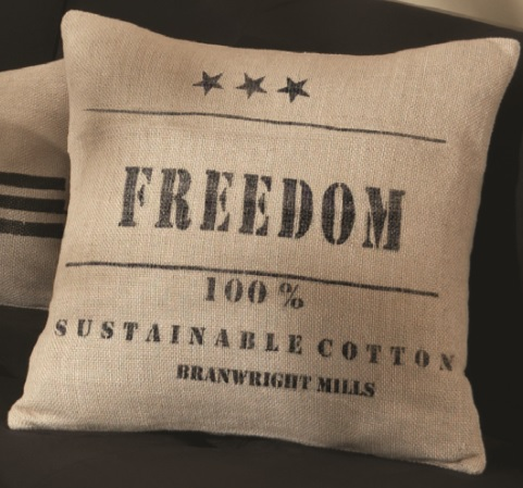 Freedom Pillow